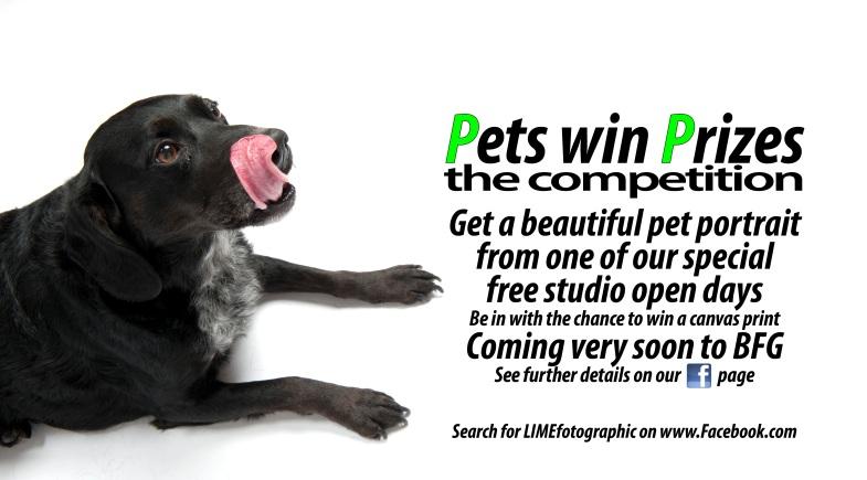 Pets win prizes 01